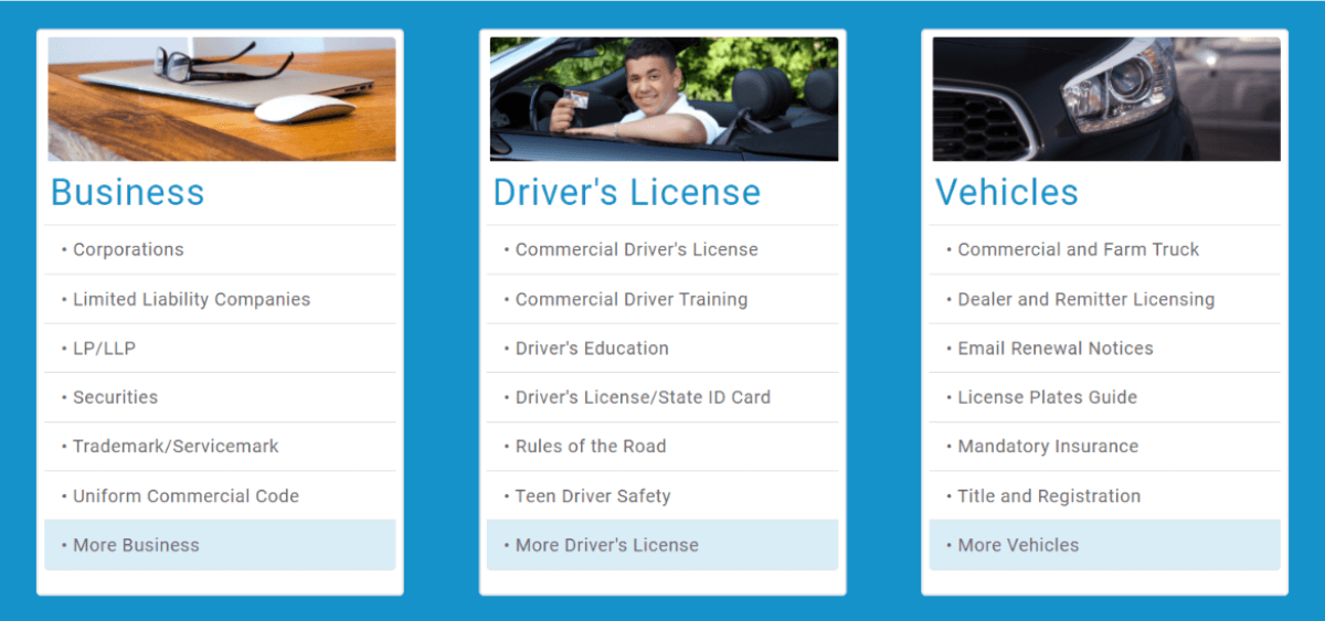 cyberdriveillinois-services